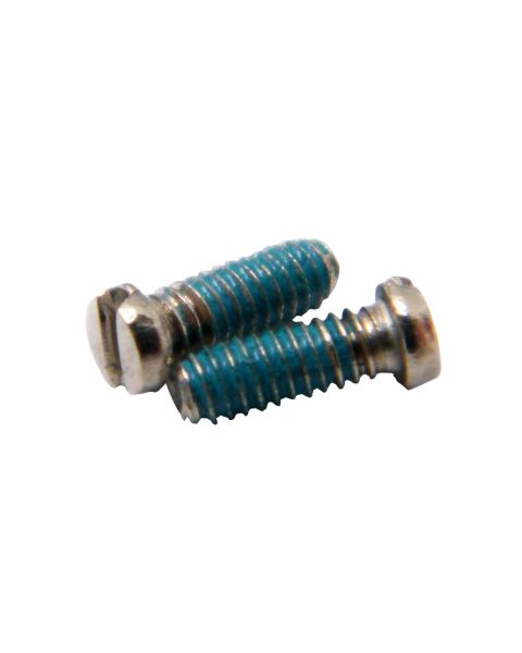 Coated Rim Screws